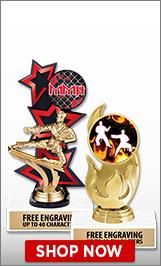 Mixed Martial Arts Trophies