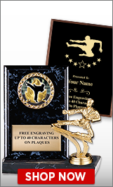 Kung Fu Plaques