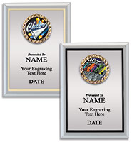 Silver Metalized Insert Plaques