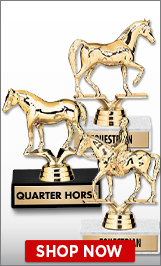 Horse Trophies