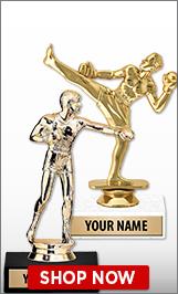 Kickboxing Trophies