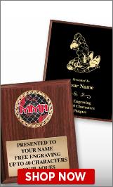 Mixed Martial Arts Plaques