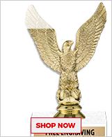 Eagle Trophies