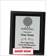 Dodgeball Plaques