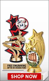 Taekwondo Trophies