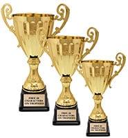 Golden Accolade Metal Cup