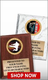 Taekwondo Plaques