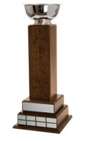 "Fantasy Football 26.75"" Tower Trophy"
