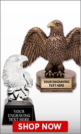 Veterans Day Eagle Awards