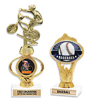 "6"" - 12"" Oval Flame Insert Trophies"