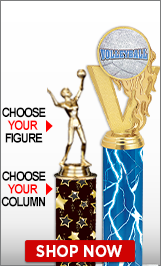 Volleyball Trophies | Volleyball Medals | Volleyball Plaques