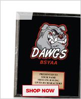 BSYAA Plaques