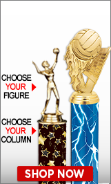 Volleyball Column Trophy