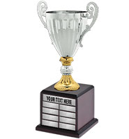 Gold & Silver Metal Accolade Perpetual Cup Trophy