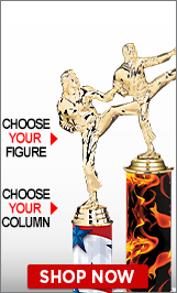 Martial Arts Column Trophies