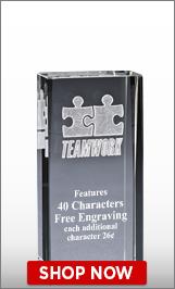 Teamwork Crystal Award