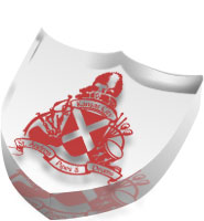 Shield Acrylic Embedment