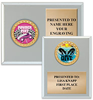 Silver Insert Plaques
