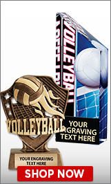 Volleyball Trophies