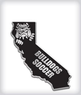 Custom State Shaped Mascot Pins