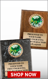 St. Patrick's Day Plaques