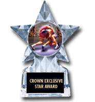 "5 3/4"" Clear Icicle Star Insert Trophy"