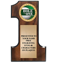 Number One Wood Plaque With Insert