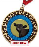 Steer Medals
