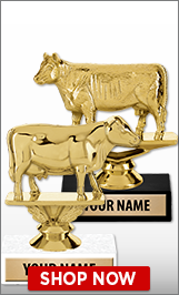 Cow Trophies
