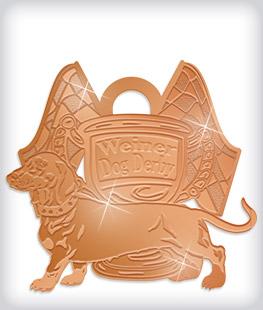 Shiny Bronze Custom Community Event Medals