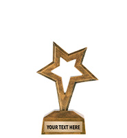 One Star Excellence Award