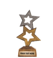 Two Star Excellence Award