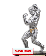 Bodybuilding Sculptures