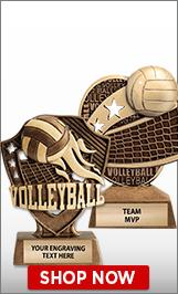 Volleyball Sculptures
