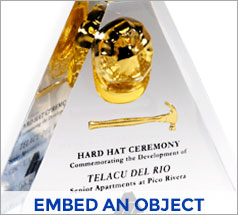 Embed Object