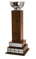 "Fantasy Football 26.75"" Tower Trophy"