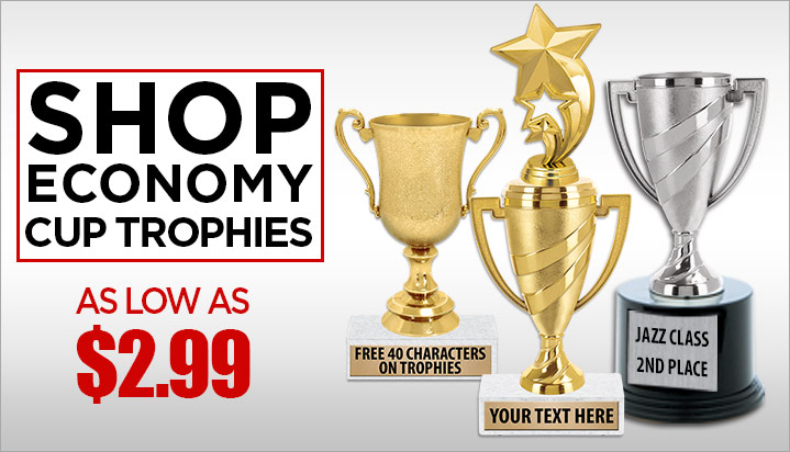 Trophies Awards Basketball Trophy With Side Trim & Free Personalized Plaques