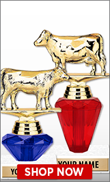 Cow Trophies