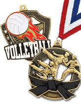 Shieldz Medals